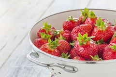 Strawberries in a sieve Royalty Free Stock Photo
