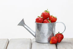 Strawberries in silver watering can Royalty Free Stock Image