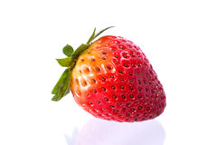 Strawberries. Single fresh strawberries  on white background stock image
