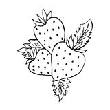 Strawberries sketch. Contour, silhouette, logo. Vector isolated image. Unique works for Your business. Royalty Free Stock Photos