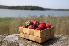 Strawberries in a small wooden basket Stock Photos
