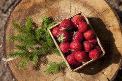Strawberries in a small wooden basket Royalty Free Stock Images