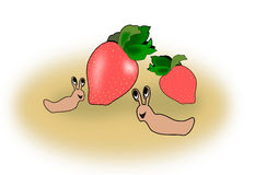 Strawberries and Snails Stock Photos