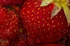 Strawberries In Soda Stock Photos
