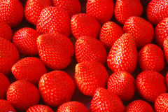 Strawberries. Some beautiful strawberries piled together Royalty Free Stock Photography