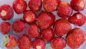 Strawberries. Some fresh strawberries without background Royalty Free Stock Images