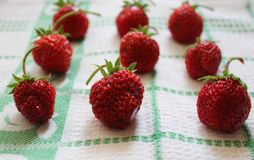 Strawberries. Some fresh strawberries on a desk Stock Image