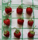 Strawberries. Some fresh strawberries on a desk Royalty Free Stock Images