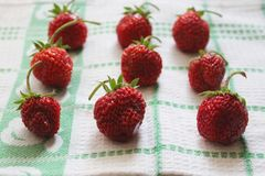 Strawberries. Some fresh strawberries on a desk Royalty Free Stock Photo