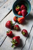 Strawberries spilling out of a bowl. Ripe strawberries spilling out of a blue bowl onto a rustic, white washed wooden background Royalty Free Stock Photo