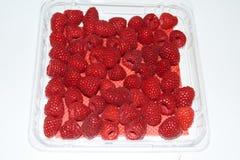 Rapsberry very nice and nutritive stock photo