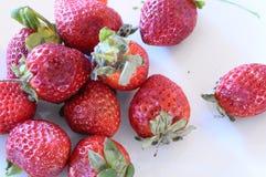 Strawberries starting to rot Stock Photos