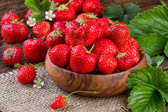 Strawberries still life Stock Photography