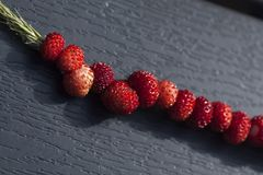 Strawberries on straw Royalty Free Stock Images