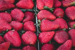 Strawberries, Strawberry, Delicious Stock Photography