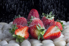 Strawberries with sugar. Conjunto de fresas y una lluvia de azucar callendo Royalty Free Stock Image