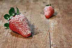 Strawberries with the sugar Royalty Free Stock Photos