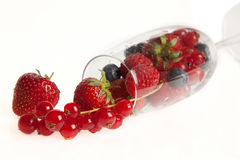 Strawberries and summer fruits Stock Image