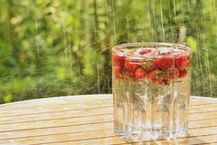 Strawberries and summer rain Stock Photography