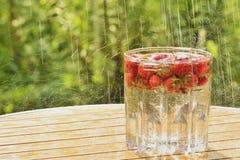 Strawberries and summer rain Stock Photography