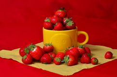 Strawberries in a sunny cup. Strawberries on red in a sunny yellow cup Royalty Free Stock Photos