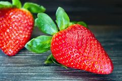 Strawberries. Stock Image