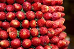 Strawberries sweet fruits Stock Photos