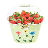 Strawberries in a tin bucket. Stock Photo