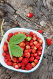 Strawberries, top view Stock Image