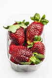 Strawberries in transparent box. Strawberries in transparent plastic box on white background Stock Images