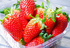 Strawberries in tray Stock Photos