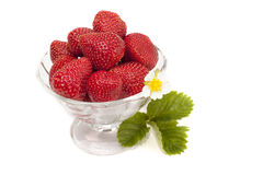 Strawberries. In a vase on a white background Stock Images
