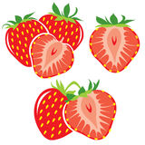 Strawberries. Vector illustrations of fresh strawberries Stock Images