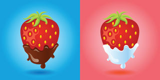 Strawberries vector image Stock Images
