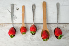 Strawberries on vintage spoons Stock Images