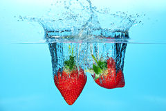 Strawberries in water Stock Images