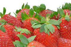 Strawberries on white royalty free stock image