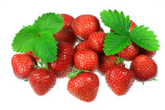 Strawberries on white. Royalty Free Stock Photo