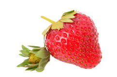 Strawberries. On a white background Stock Image