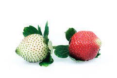 Strawberries on a white background. Strawberries also known as cranberry, ocean raspberries, raspberry and other places, is a red fruit Royalty Free Stock Photography