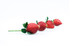 Strawberries on a white background Royalty Free Stock Photos
