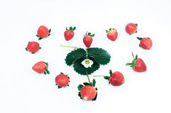 Strawberries on a white background Stock Photography