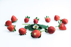 Strawberries on a white background Stock Photo