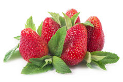 Strawberries on a white background. Stock Photography