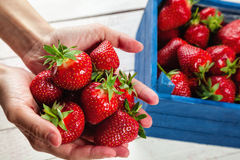 Strawberries On White Board Royalty Free Stock Photo
