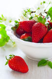 Strawberries in white bowl Stock Photos