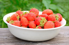 Strawberries in white bowl Royalty Free Stock Photography