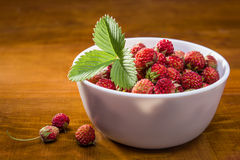 Strawberries in a white cup Royalty Free Stock Photos