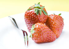 Strawberries on white Plate Stock Images