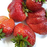 Strawberries on the white plate Stock Image